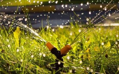 Your Landscape Needs an Expertly Set Up Lawn Sprinkler