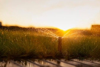 Your Watering System May Be Costing You More Cash