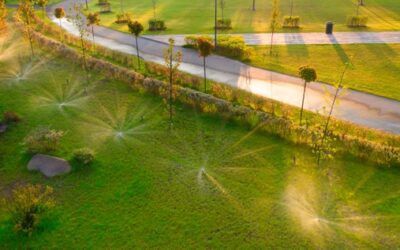 5 FACTORS TO SELECT A TEXAS SPRINKLER SERVICE FOR YOUR LAWN