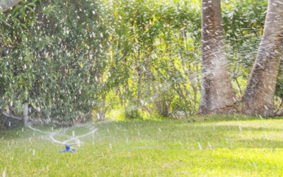 Bring Beauty To Your Lawn With  Sprinkler Maintenance In Texas