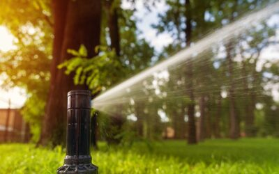 Sprinkler Repair Dallas – How to Find the Best Company?